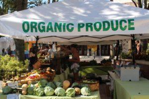 west palm beach green market organic produce