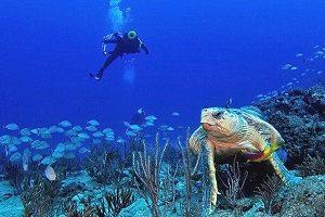 west palm beach scuba
